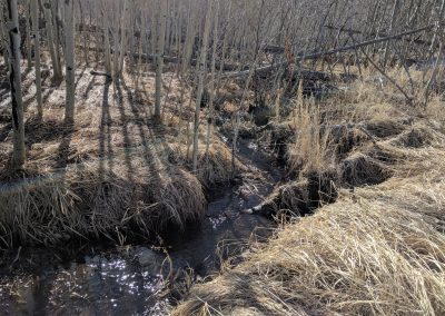 In the aftermath of the Buffalo Creek Fire and the Hayman Fire, Denver Water spent more than $27 million on water quality treatment, sediment and debris removal, reclamation, and infrastructure.