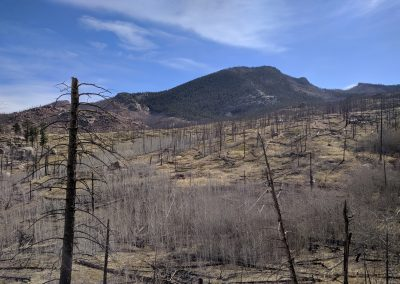 The Hayman Fire was one of the largest and most devastating wildfires in Colorado's history.