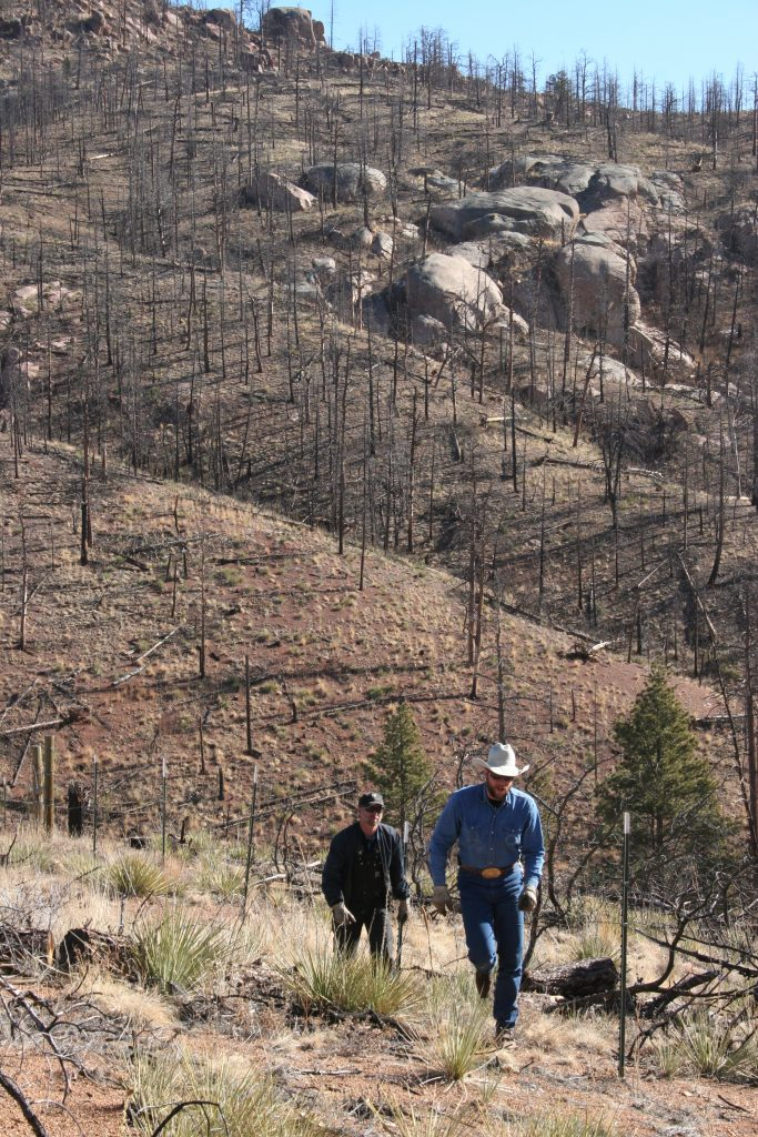 Lands around Cheesman Reservoir are still being stabilized years after Hayman Fire.