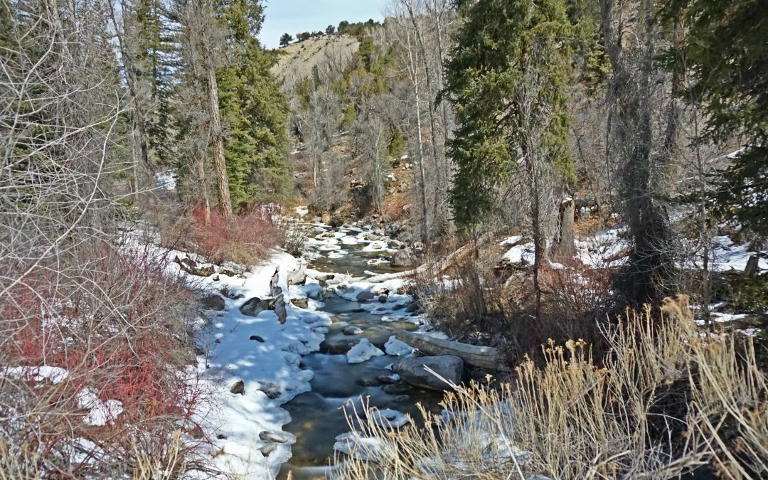 Could Colorado Soon Have a Second Wild and Scenic River?