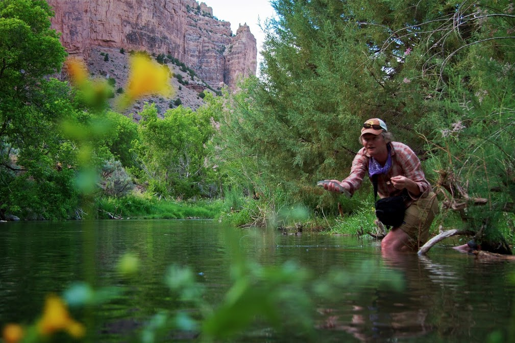 River and Stream Planning, Q&A with Dan Luecke