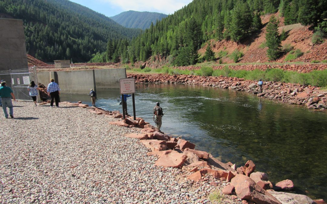 Colorado program that enhances streams gets a second chance at expansion this summer