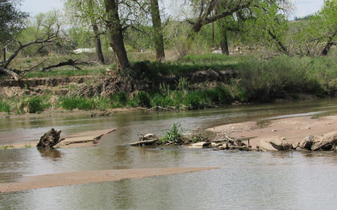 Is the South Platte River too salty? New study to examine water quality amid concerns