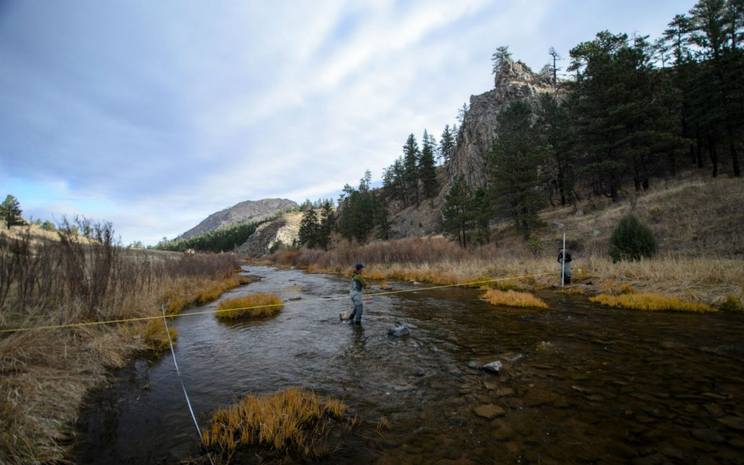 To boost Poudre River flows, cities, conservationists craft new plan from old playbook