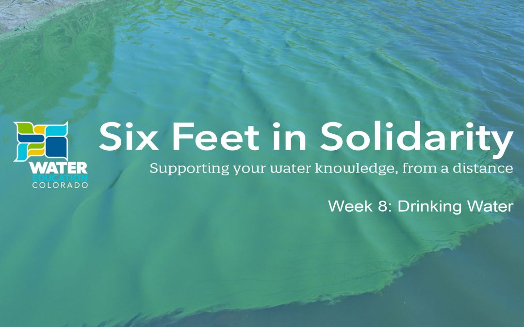 Six Feet in Solidarity – Week 8: Drinking Water