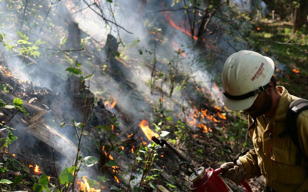 Fires Erupt in Midst of Risk-Reduction Planning