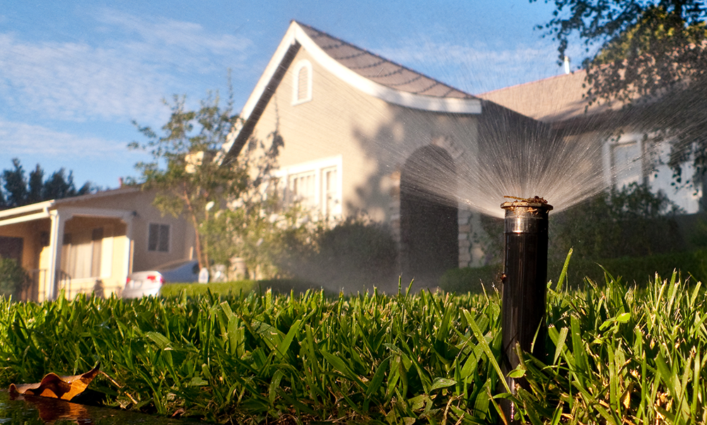 How to Save Water Inside and Outside the Home